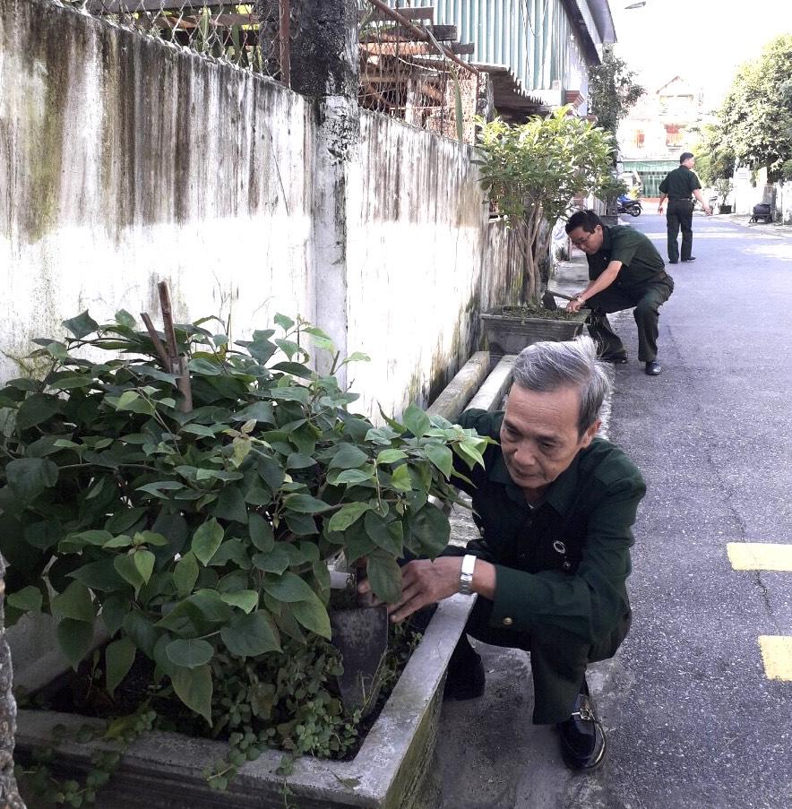 Cán bộ, hội viên CCB thị xã Hồng Lĩnh xung kích phong trào chung sức xây dựng Nông thôn mới, đô thị văn minh.